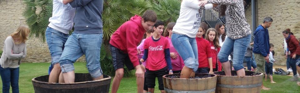 Vendimia con los niños, en La Rioja