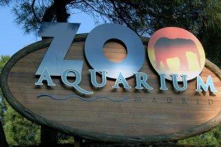 Campamentos para niños en el Zoo Aquarium de Madrid