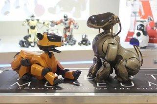 Museo del Robot: Exposiciones para los niños en Madrid