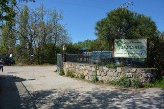 Visitas y talleres ecológicos para niños en El Escorial