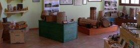 Abejas del Prepirineo: Museo para niños en Zaragoza